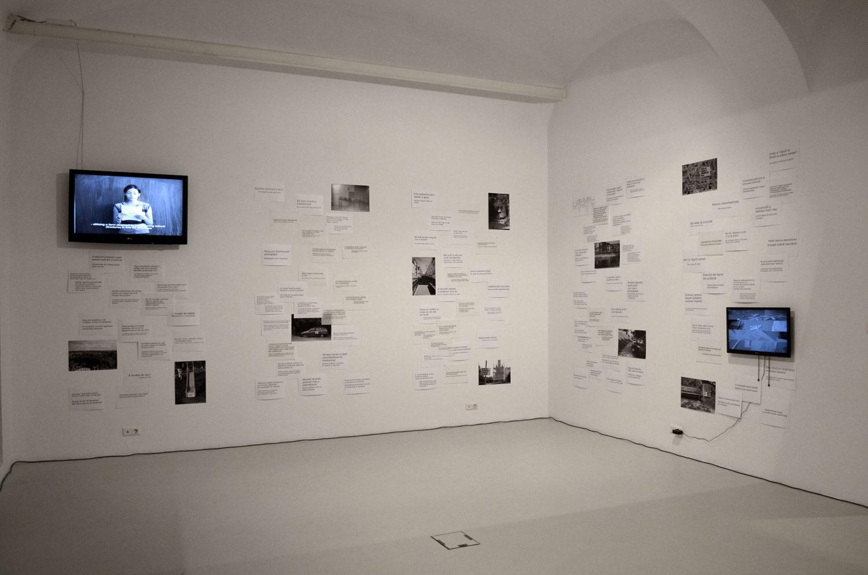 Spațiul Expozițional de Artă Contemporană MAGMA, Sfântu Gheorghe 2014